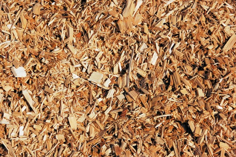 Wood chips royalty free stock photography