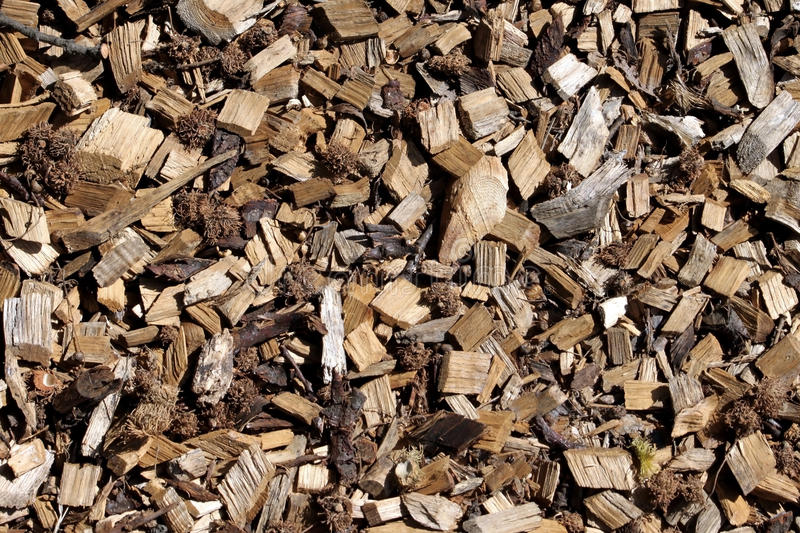 Download Wood chips background stock image. Image of compost, mulch - 11064133
