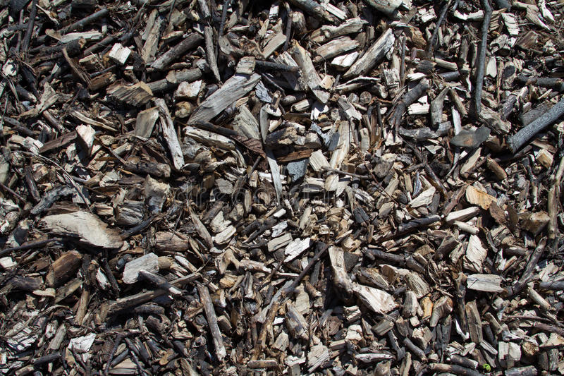 Wood chips background with vignette. Old wooden sliver closeup as background and texture royalty free stock photo