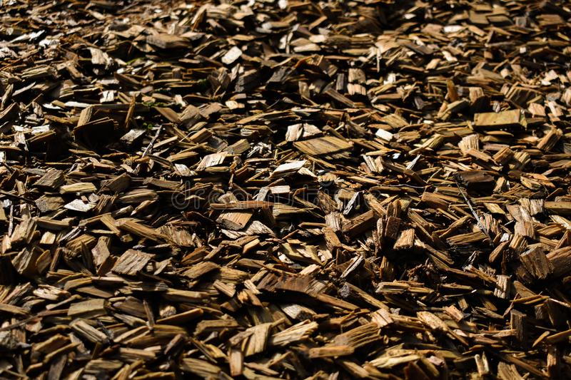Wood Chips Flakes Chunks Pieces Brown Gold Sunshine Decoration P. A floor of wooden flakes in a playground which can be used as a cool background royalty free stock photos