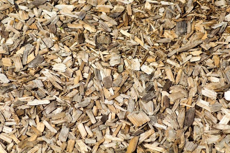 Download Wood Chips stock photo. Image of wood, texture, layer - 91658322