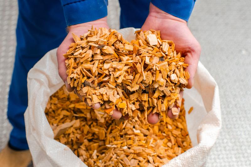 Wood chips. The line for the production of smoked delicacies. In. Dustrial manufacture of sausage products. Smokehouse of meat products stock images