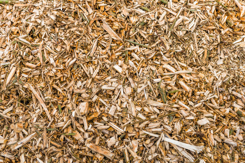 Wood chips after pruning of trees from close. Closeup of a heap of wood chips after pruning of trees at the end of the winter season stock images