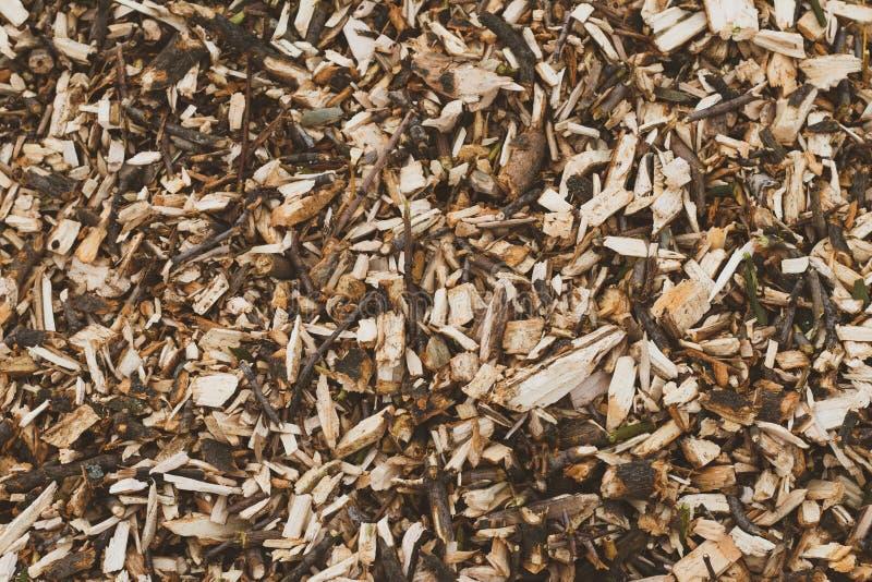 Wood CHips Texture Bråte industriell träbakgrund Logga närbild Modell av stammen, väggyttersida, timmer Brunt vedtr? arkivbilder
