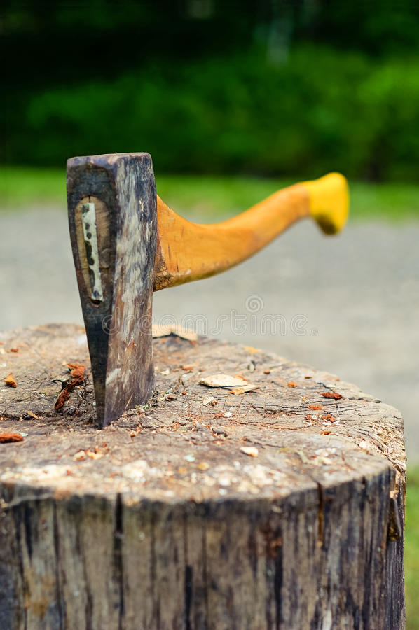 Free Wood Chopping Axe Stuck In Tree Stump. Stock Image - 87817421