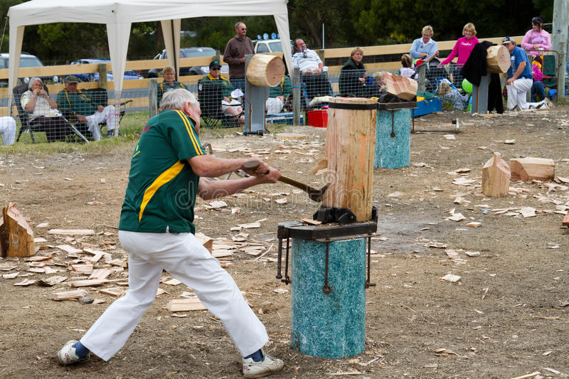 Download Wood Chopping Event Editorial Stock Image - Image: 18869129