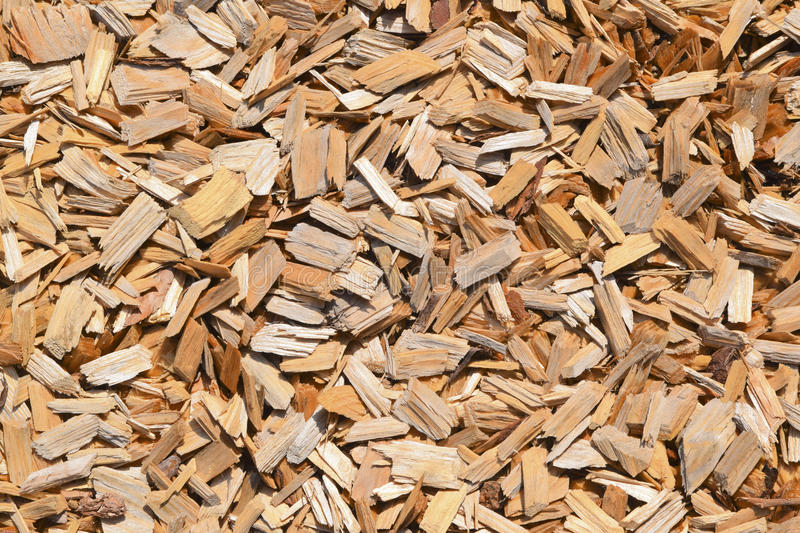 Wood. Closeup of surface covered with wood chippings stock images