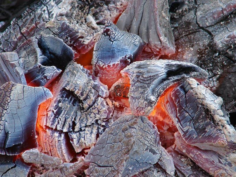Wood coal. royalty free stock photos