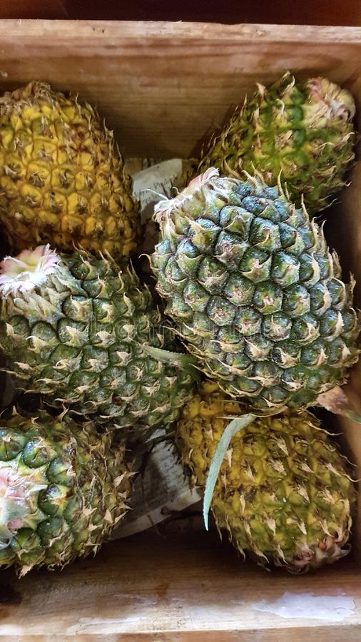Pineapples in crate stock image