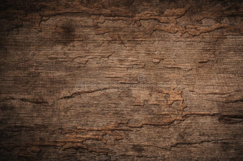 Wood decay with wood termites,Old grunge dark textured wooden ba. Ckground,The surface of the old brown wood texture stock image