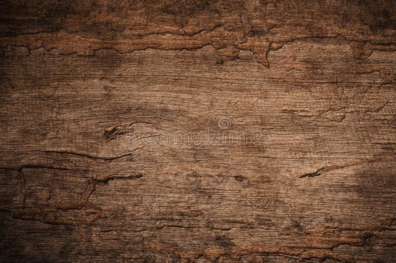 Wood decay with wood termites,Old grunge dark textured wooden ba. Ckground,The surface of the old brown wood texture royalty free stock images