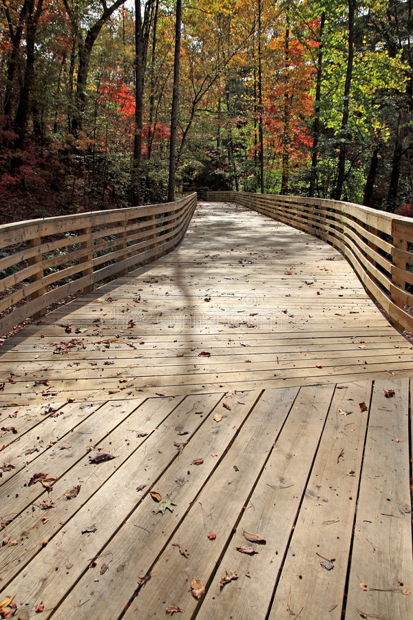 Wood Decking stock images