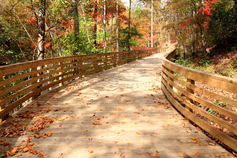 Wood Decking Pathway royalty free stock photo