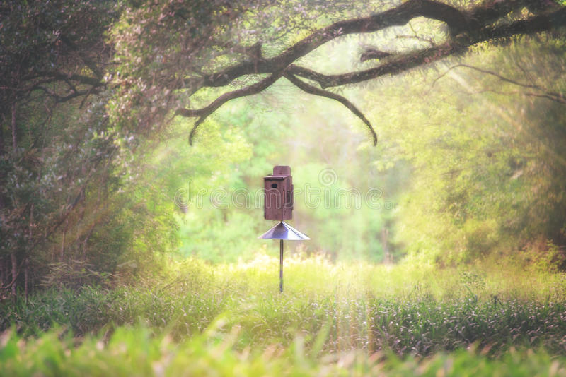Wood Duck Box stock images