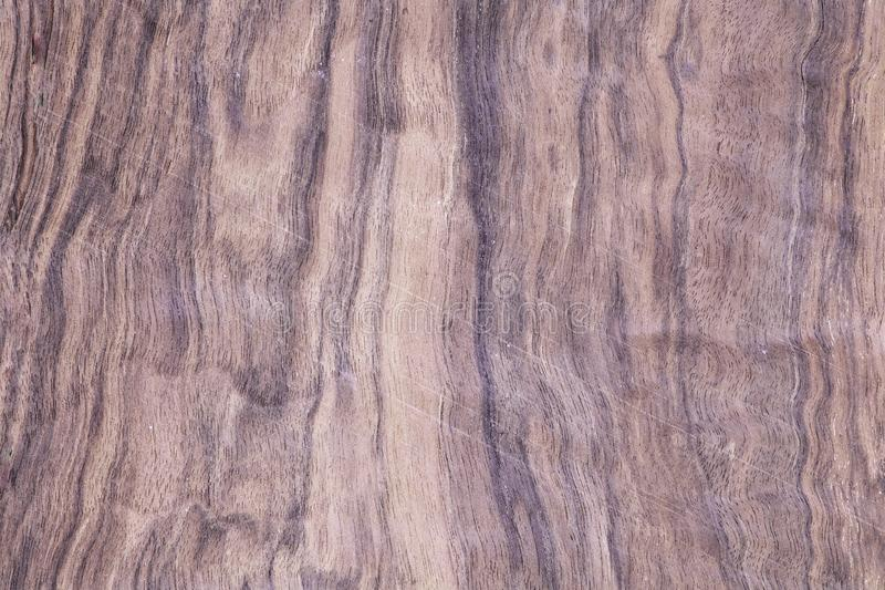 Wood exotic, veneer tree desk royalty free stock photos