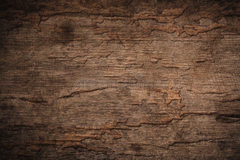 Wood förfall med wood termit, gammalt grungemörker texturerade trälodisar fotografering för bildbyråer