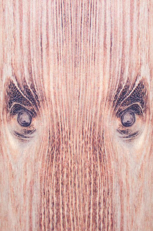 Free Wood Face Stock Images - 55709654