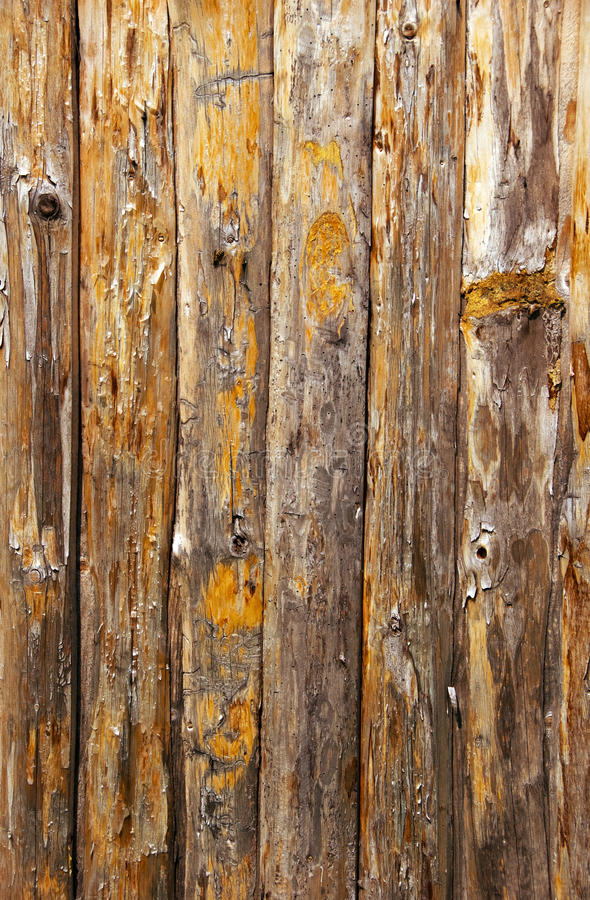 Free Wood Fence Royalty Free Stock Photography - 14354167