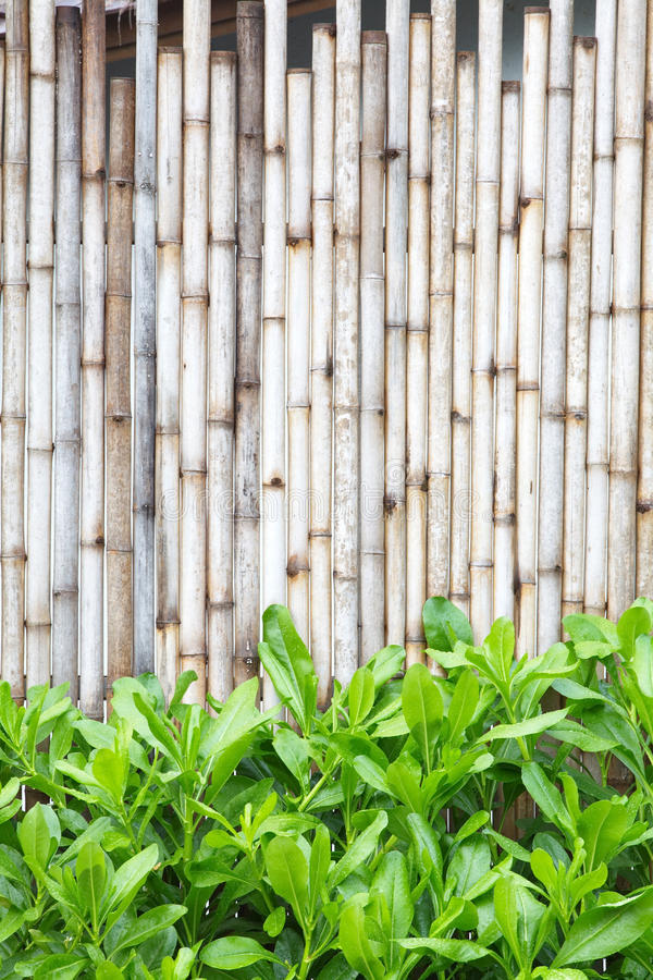 Wood fence. Brown bamboo wood fence pattern and background royalty free stock photo