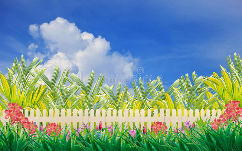 Download Wood Fence And Flower In Home Garden Wiht Blue Sky Stock Photo - Image of blue, children: 27229452