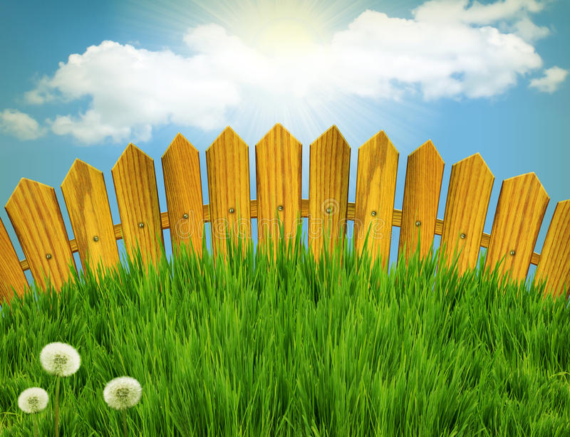 Download Wood Fence And White Flowers. Stock Image - Image: 24563321