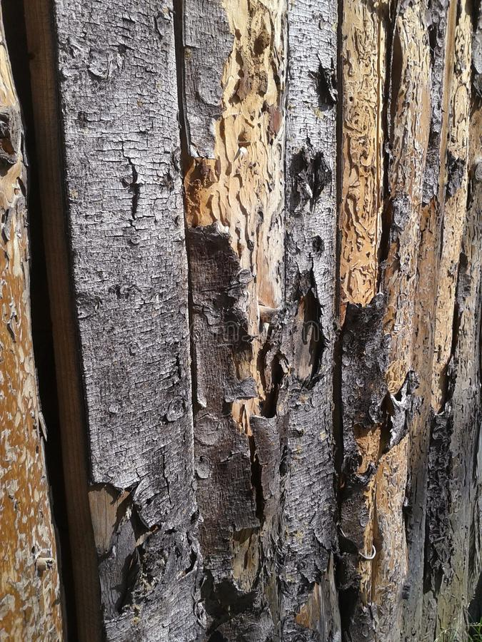 Wood fence. Wooden, fence, wood, bark, backgraund stock photos