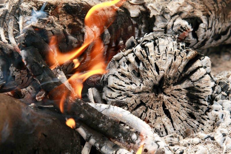 Bonfire with ash stock photo