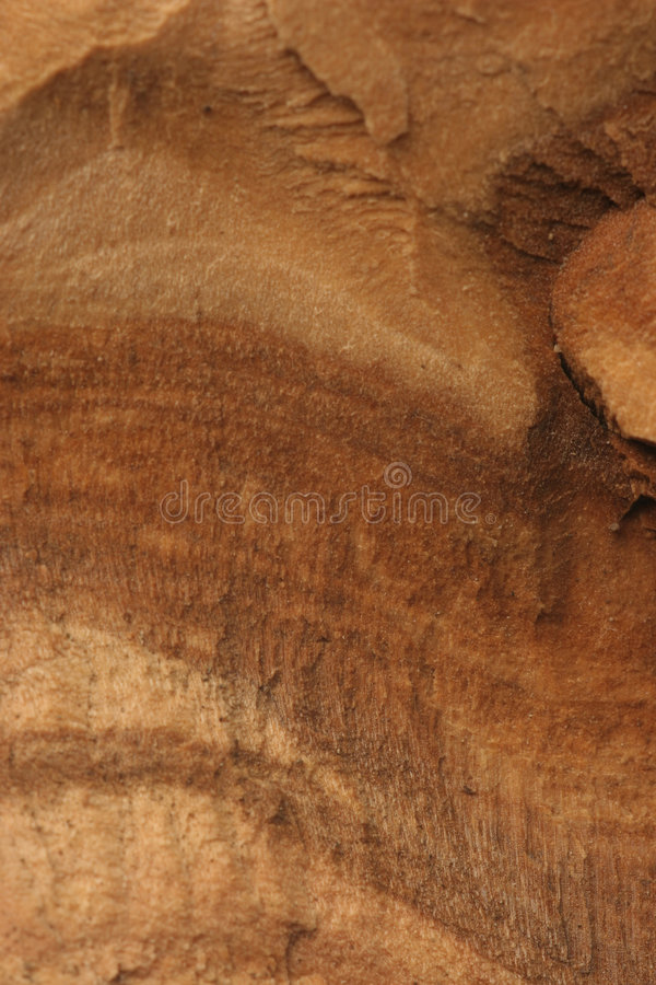 Download Wood grain stock photo. Image of cross, olive, wood, close - 164496