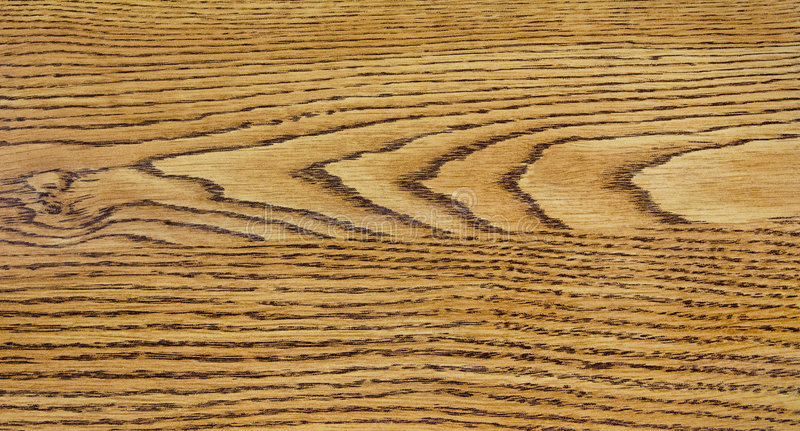 Download Wood Grain Detail stock photo. Image of texture, textured - 5322662