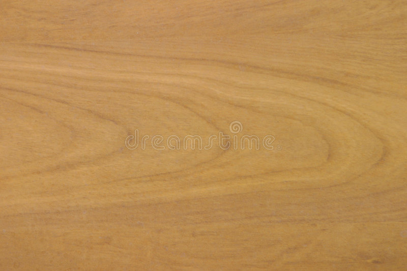 Wood Grain Patterns for Background stock photos
