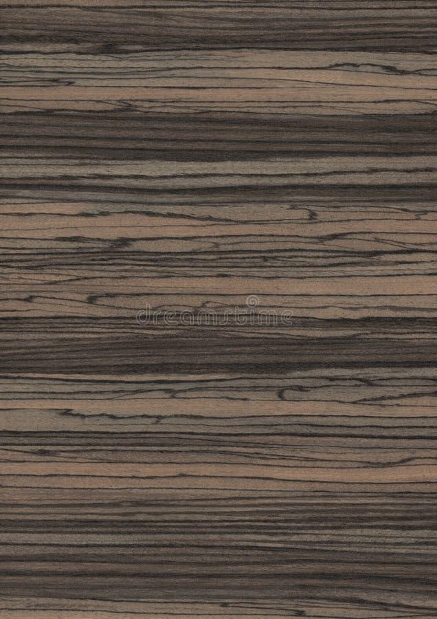 Wood grain texture background stock image