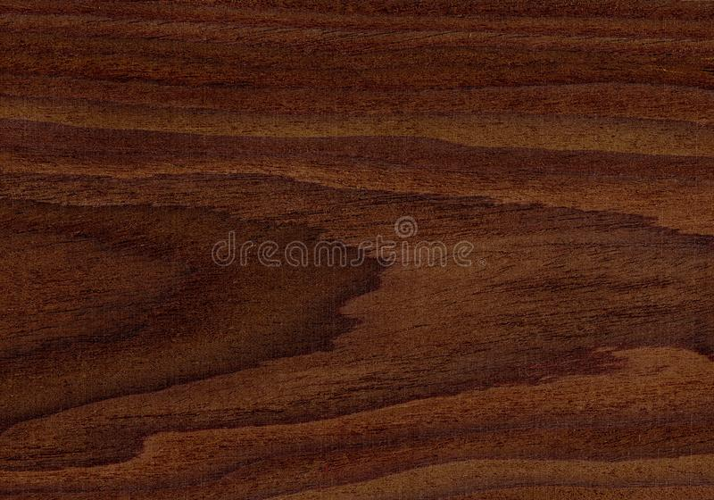 Walnut Wood Texture Natural Wood Textures High Resolution Texture Stock Photo Image Of Grained Natural 164861006