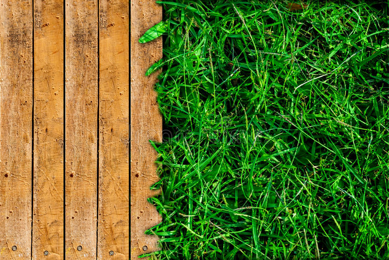 Wood and green grass royalty free stock photos