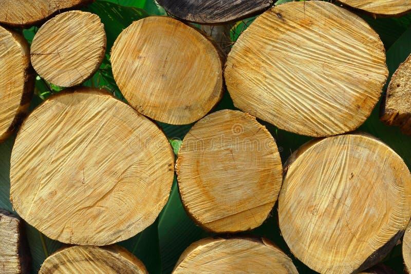 wood högg av journaler royaltyfri bild