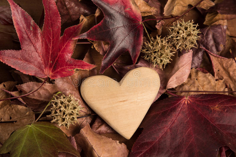 Wood heart in autumn stock photography