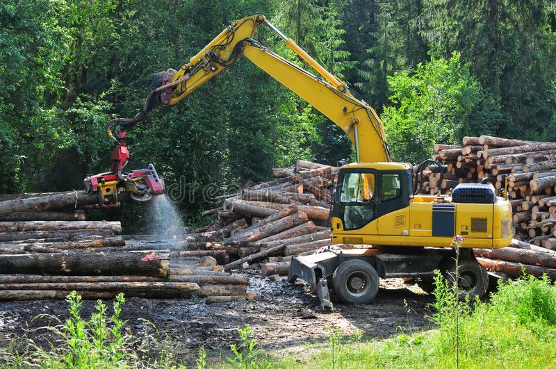 Wood industry royalty free stock photo