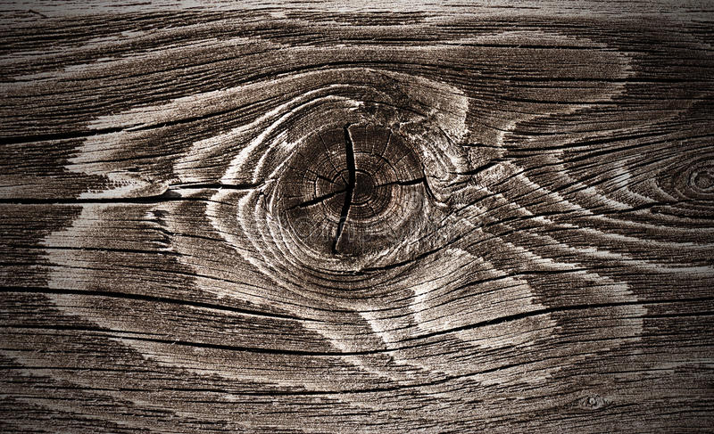 Wood knot royalty free stock images