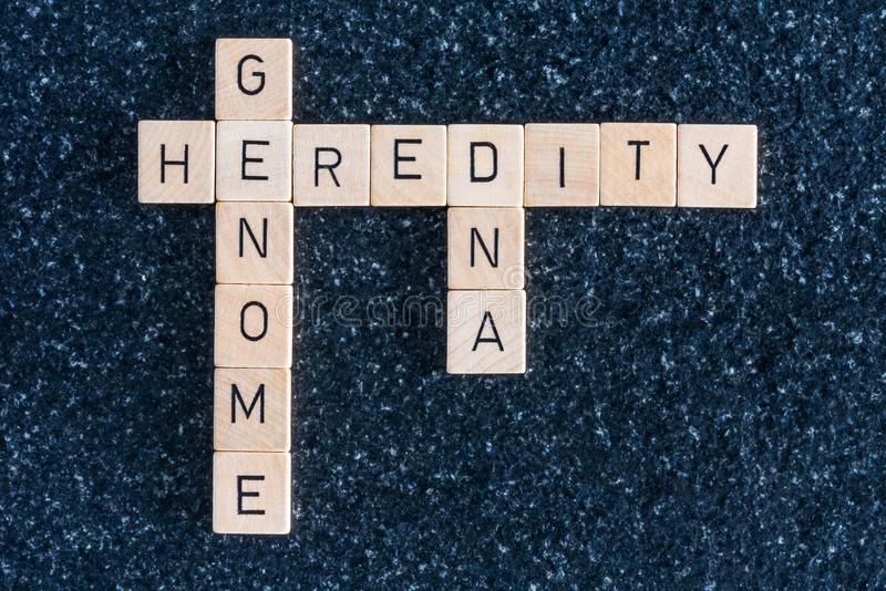 Wood letters forming genome dna and heredity words. On a black table stock photography