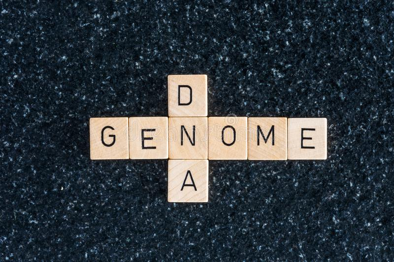Wood letters forming genome and dna words. On a black table royalty free stock photography
