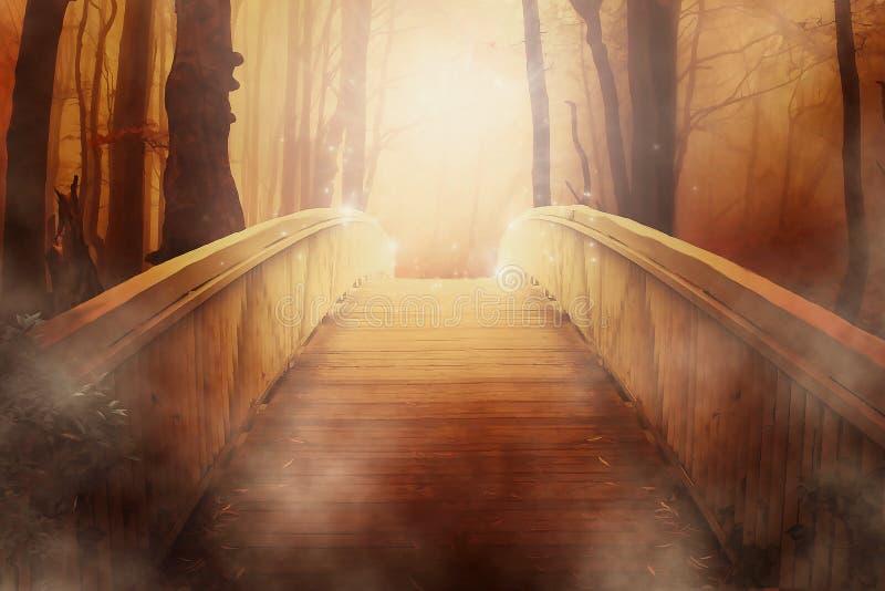 Wood, Light, Sunlight, Morning royalty free stock photo