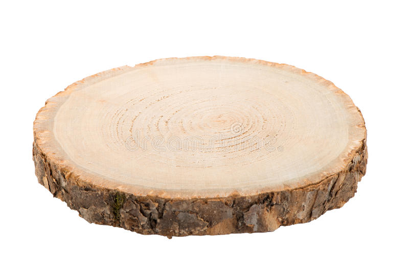 Wood log slice royalty free stock images