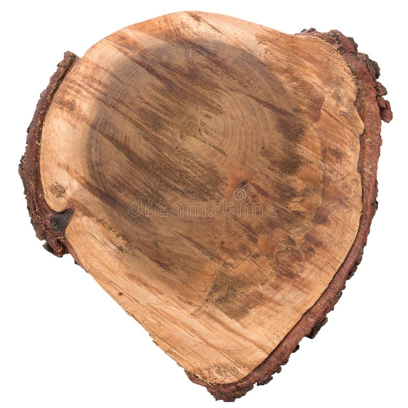 Wood log slice stock photo