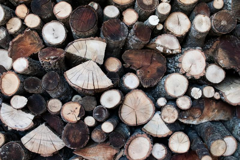 Wood logs cut with the visible grain. Wood for winter with different types of wood royalty free stock photos