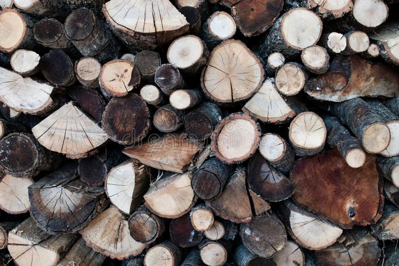 Wood logs cut with the visible grain. Wood for winter with different types of wood royalty free stock photography