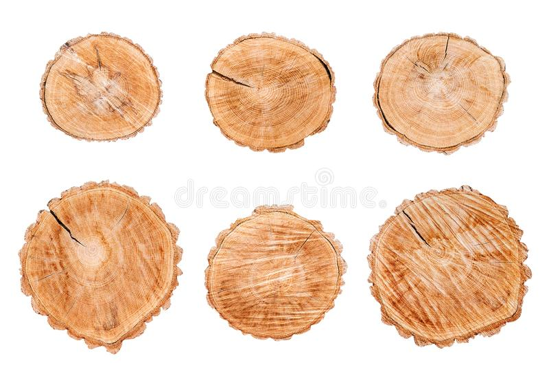 Wood logs set isolated on white background royalty free stock image