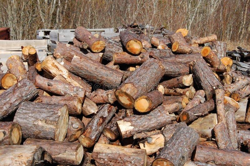 Wood, Lumber, Logging, Tree Free Public Domain Cc0 Image
