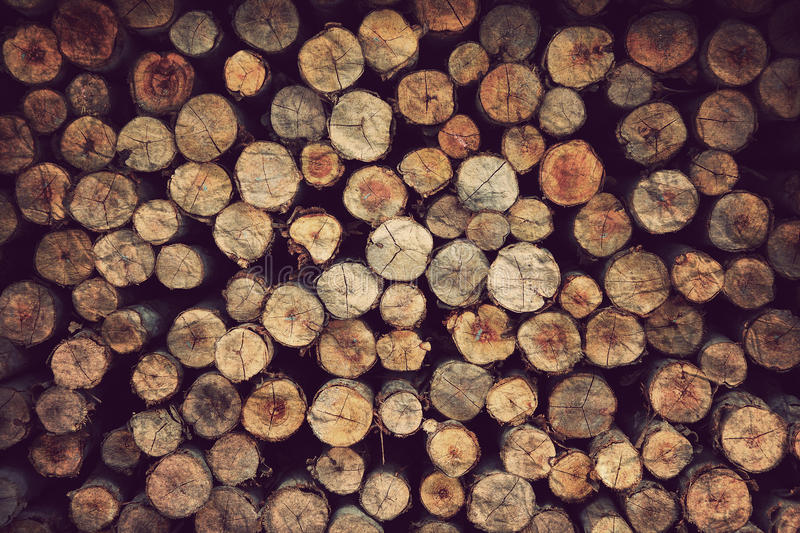 Wood Material Background Stock Illustration Image Of