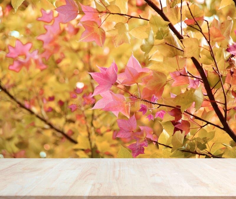 Wood materiell bakgrund för produktskärm arkivbilder