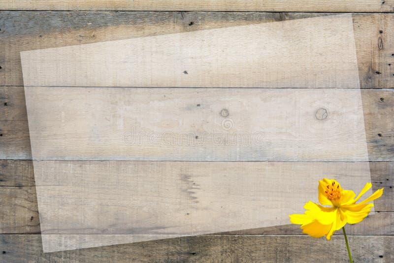 Wood modell och ram arkivbilder