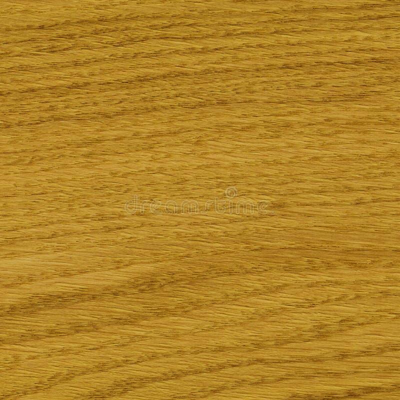 Wood, oak veneer stock image